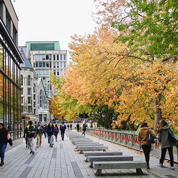 Students walking along path near McGill library with colourful autumn trees overhanging