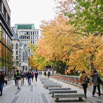 Des étudiants marchant le long du chemin près de la bibliothèque de McGill avec des arbres d'automne colorés surplombant