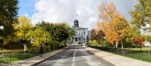 Undergraduate Studies | Anatomy and Cell Biology - McGill University