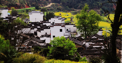 Traditional Chinese Village Housing (He Hong Yu)