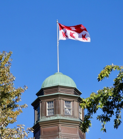 The McGill Flag in the wind on a campus building
