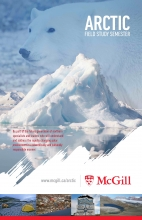 Arctic Field Study Semester