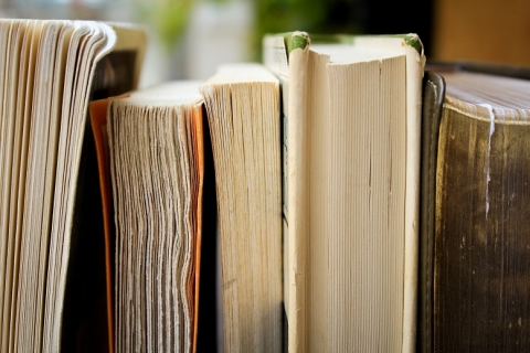 Photo of books by Syd Wachs