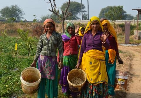 Indian women cultivating by Alejandra Vargas Garcia