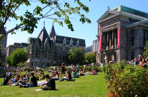 McGill's Lower Field