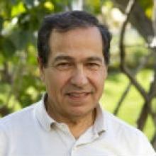 Amine Kamen