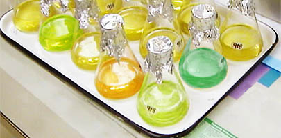 Colourful Erlenmeyer flasks
