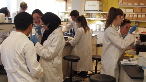 Lab - Research