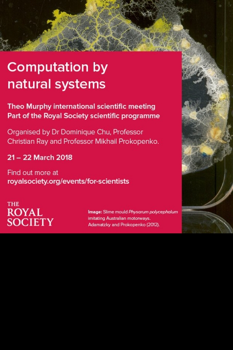Computation by Natural Systems event - The Royal Society
