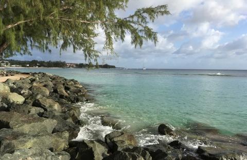 a shoreline in Barbados