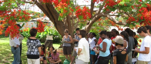 Students gathered around during the Barbados Interdisciplinary Field Studies session