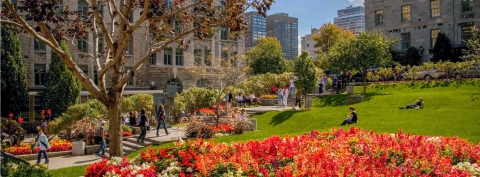 Image of a part of McGill's lower campus during the summer