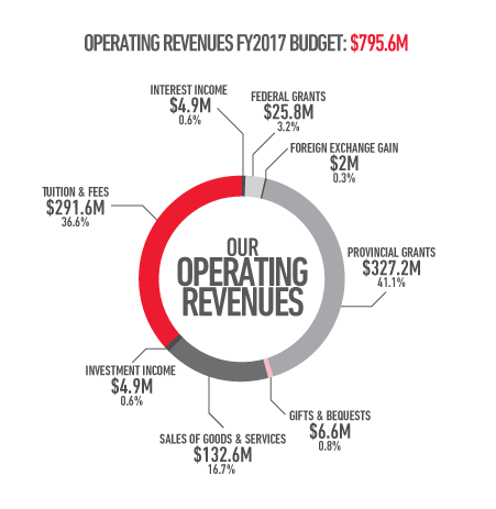 Operating revenues financial year 2017 budget: 795.6 million dollars
