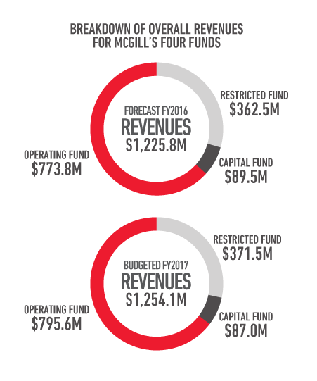 Breakdown of overall revenues for McGill's four funds