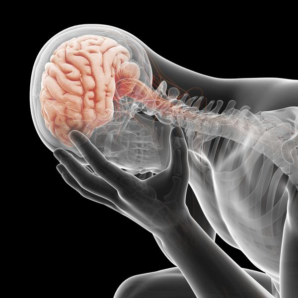 Study on cerebral astrocytes in depression and suicide | Channels ...