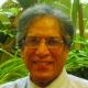 M. Saeed Mirza