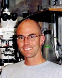 David Stellwagen