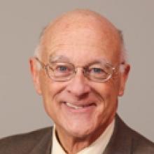 David Morris Lank