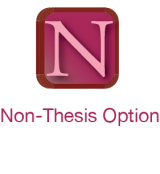 non-thesis option