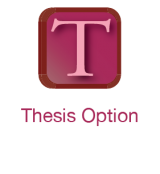 thesis option