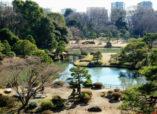 picture of Tokyo Park winter 2011
