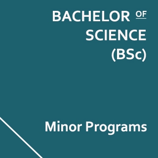 Bachelor of Science (BSc) Minor Programs