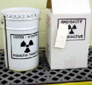 Radiation waste container