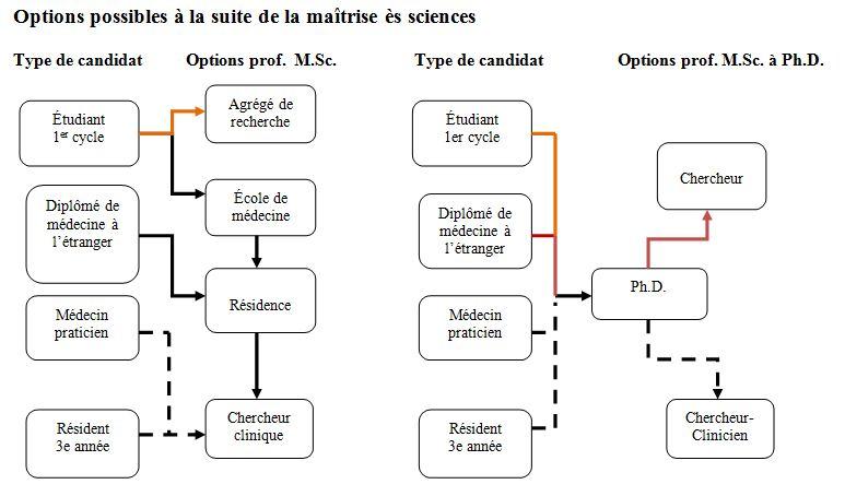 Options possible après la MSc
