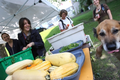McGill's annual Farmer's Market provides students, employees, and neighbourhood residents the opportunity to buy fresh, healthy, organic food directly from the farmers who produce it.