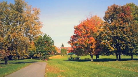 Macdonald Campus in fall, orange leaves