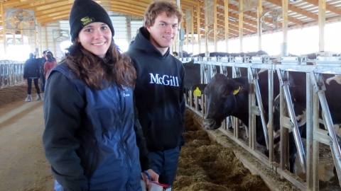 FMT Students in a dairy barn