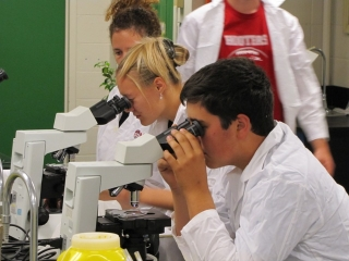 First year students using microscopes to look at plant cells