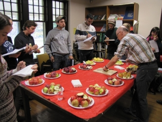 Students sample apples for different characteristics