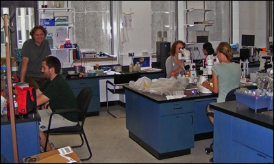 Gregor Fussmann with students in the lab