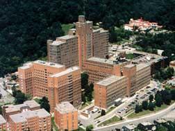 Muhc Montreal General Hospital Division Of Geriatric