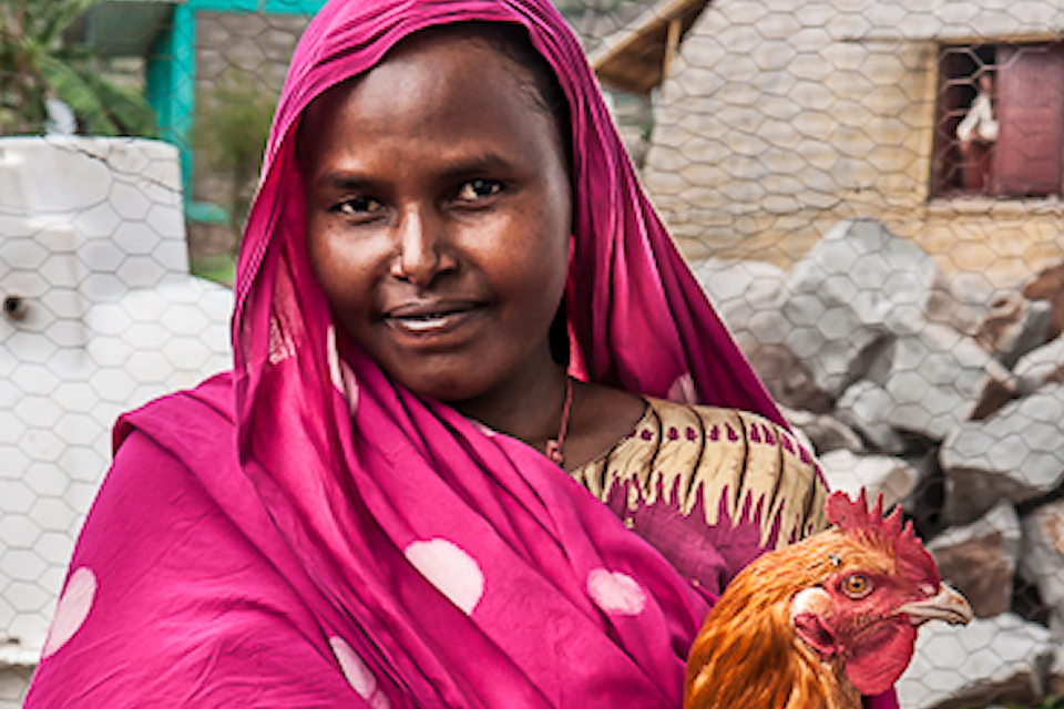 GROW: Growing Nutrition For Mothers and Children in Ethiopia