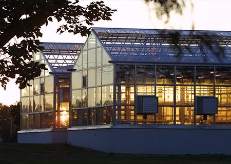 MacDonald Campus greenhouse