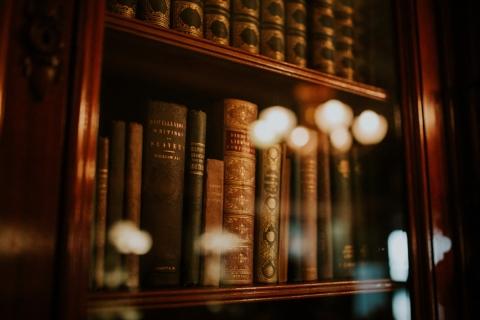 Books dispayed on a bookshelf