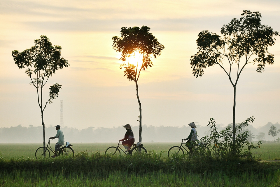 Three persons riding bikes in the misty countryside of Kebumen district, Central Java Province, Indonesia. By Dikaseva via Unsplash.