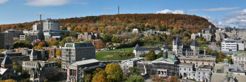 A photo of McGill campus with Mont Royal in the background