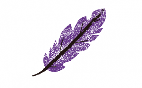 A drawing of a purple and black feather against a white background