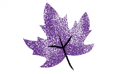 A drawing of a purple and black maple leaf against a white background