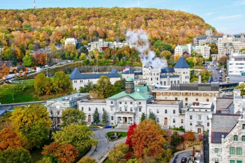 A bird's eye view of McGill campus, showing buildings, trees, and Mount Royal in the background