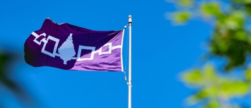 A close-up photo of the Hiawatha Wampum Belt flag flying on McGill Campus.