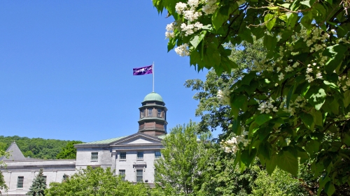 A photo of the Hiawatha Wampum Belt flag flying from a building with a domed roof at McGill