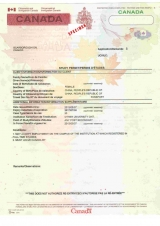 Sample invitation letter for visa application