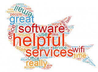 surveys word cloud