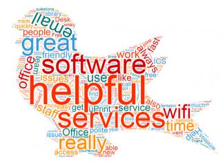 surveys word cloud