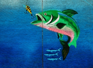 Image of fish about a eat a hook