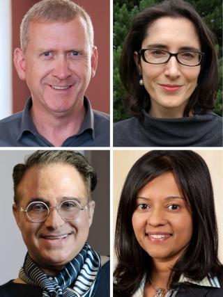 Peer Zumbansen, Alicia Hinarejos, Darren Rosenblum & Priya Gupta.